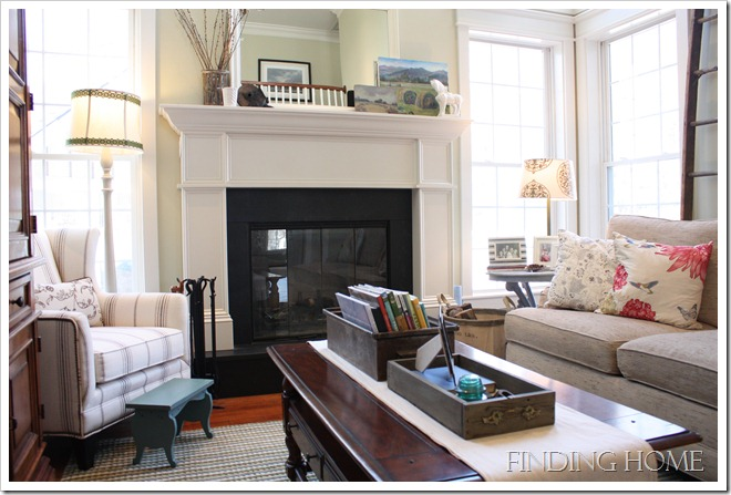 Finding Home Family Room 5